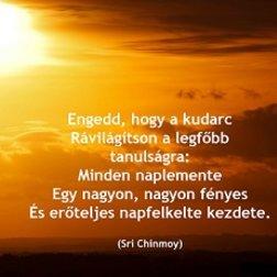 Nyít Nap Csongrádon