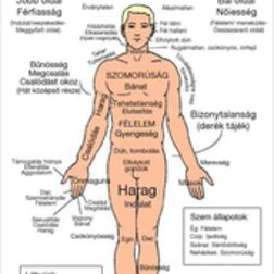 Terápiák