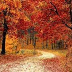 Október havi lehetőségek